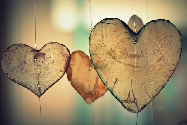 heart-700141_640 (1)