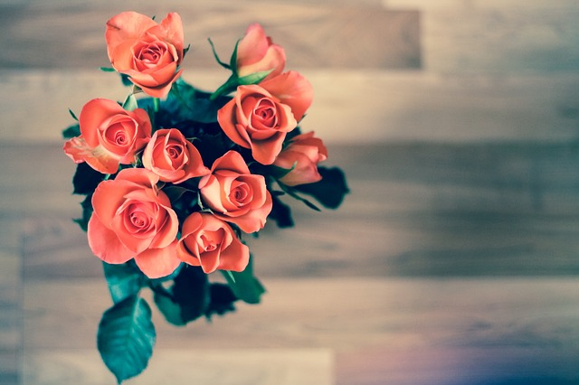 roses-690085_640 (1)