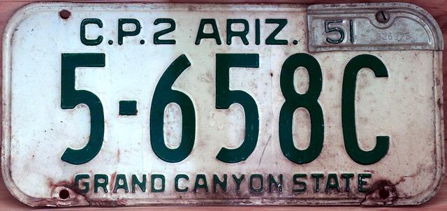 license-plate-654522_640