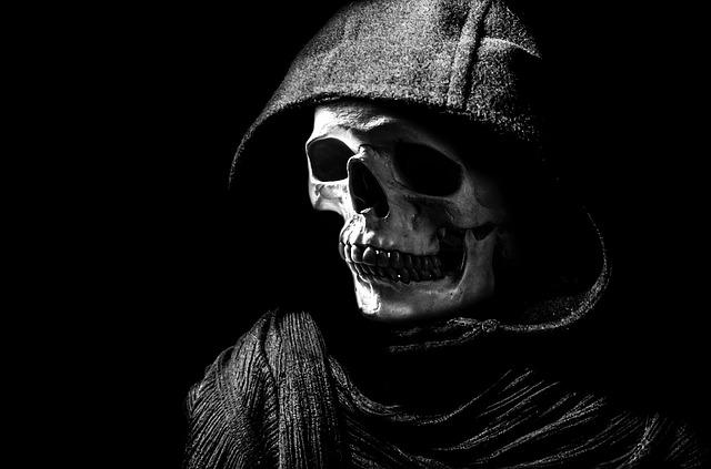 skull-220049_640